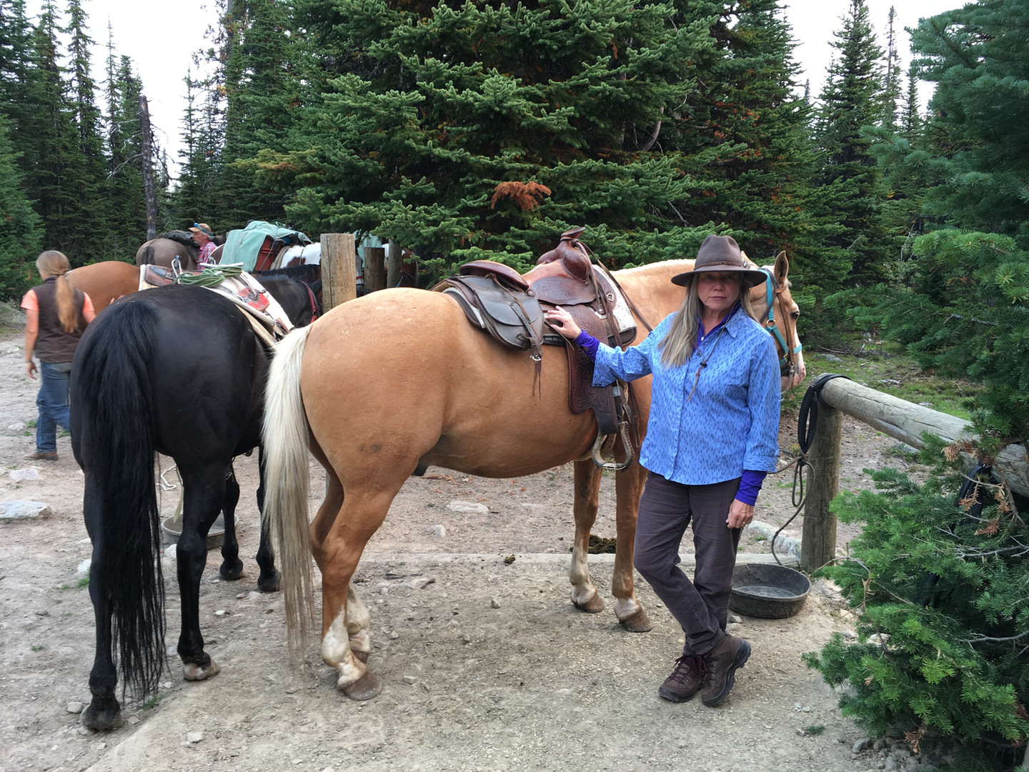 Transportation to the Tonquin Valley, Ca