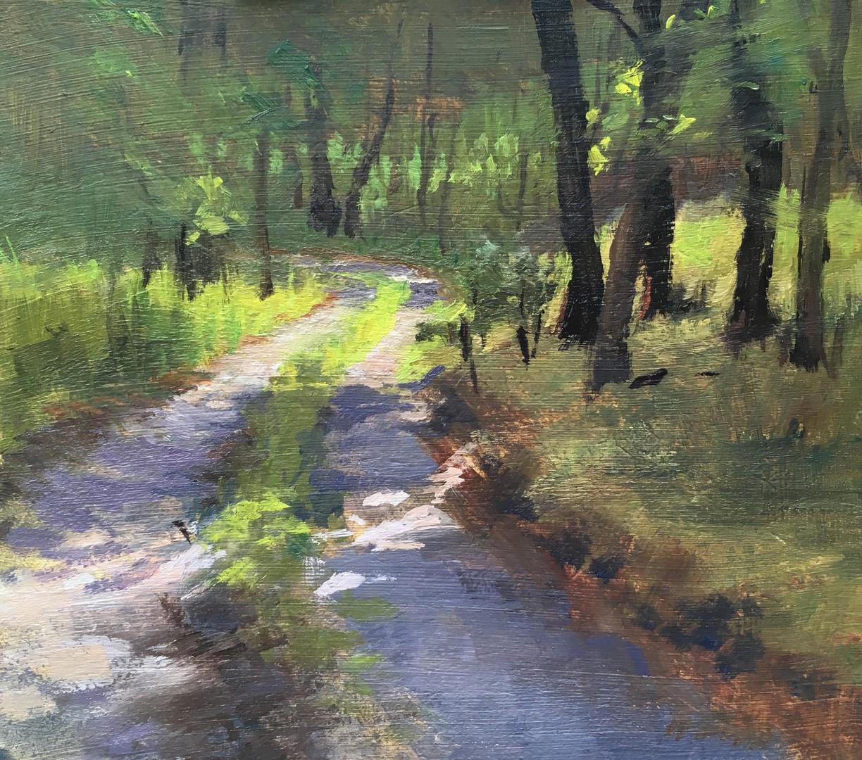 Road at Wauhilla