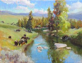 Buffalo in the Lamar Valley, Yellowstone