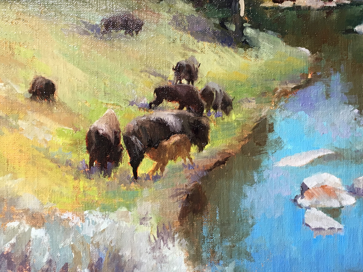 Detail of Lamar Valley, Yellowstone