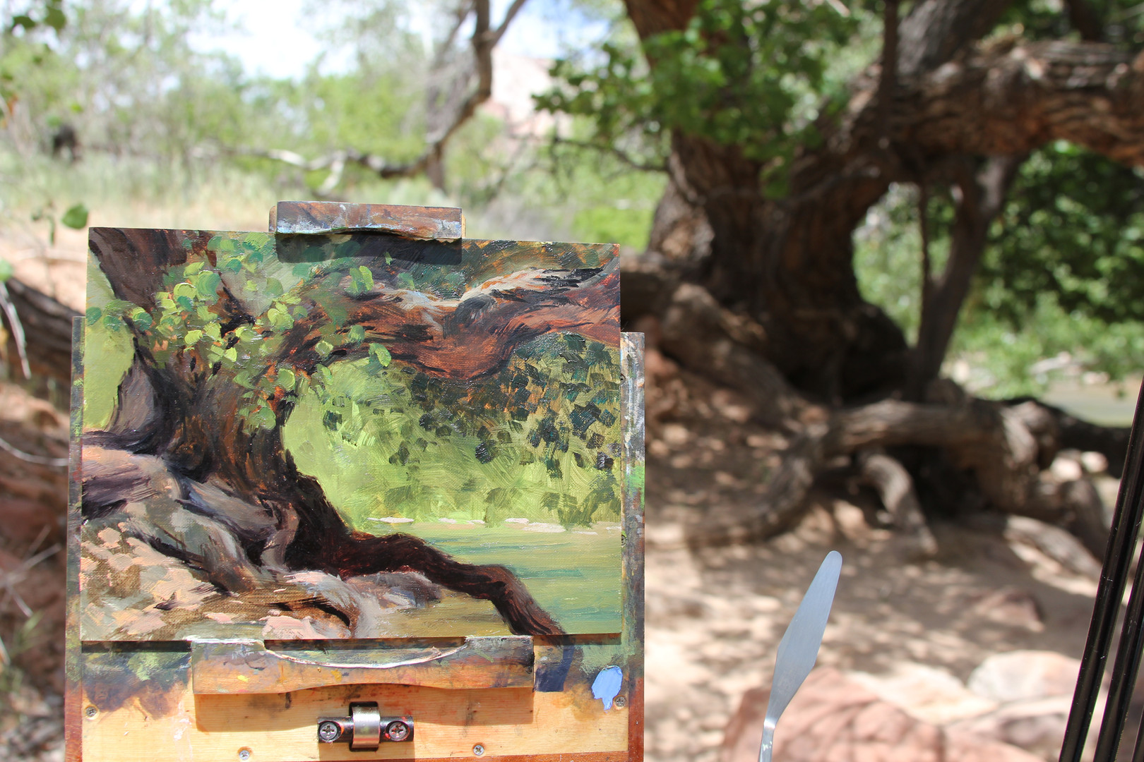 Jan Jewell painting at Zion Nat Park