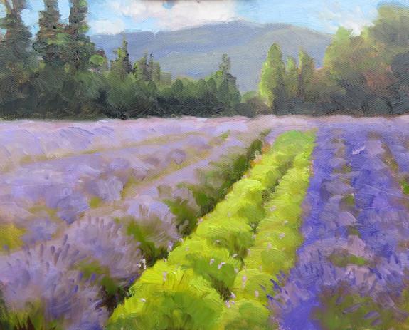Lost Mountain Lavender Farm
