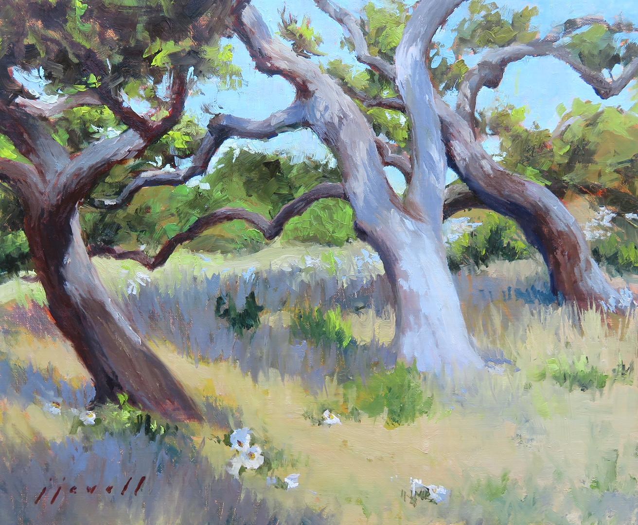 Near the Big Tree, Texas