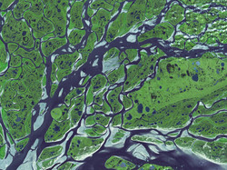 river_network_earth.jpg