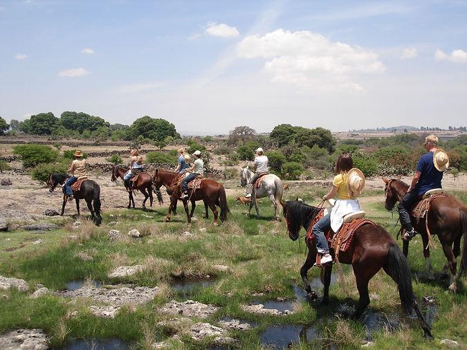 Horseback Riding GROUPS  3_edited.jpg