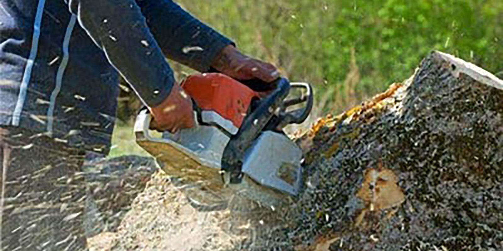 VT chainsaw work stump grinding