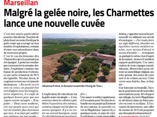 Article Midi Libre paru le 04/09/21