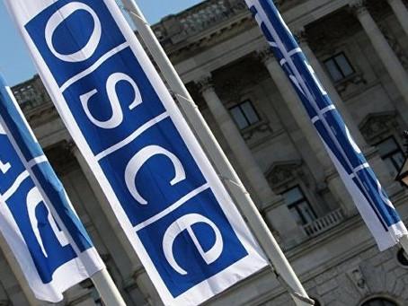 George Muradov took part in OSCE meeting