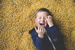 Renton Child Photographer