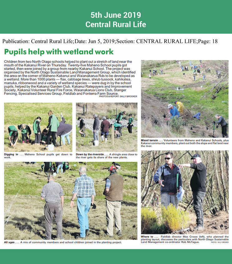 pupils help with planting work central r