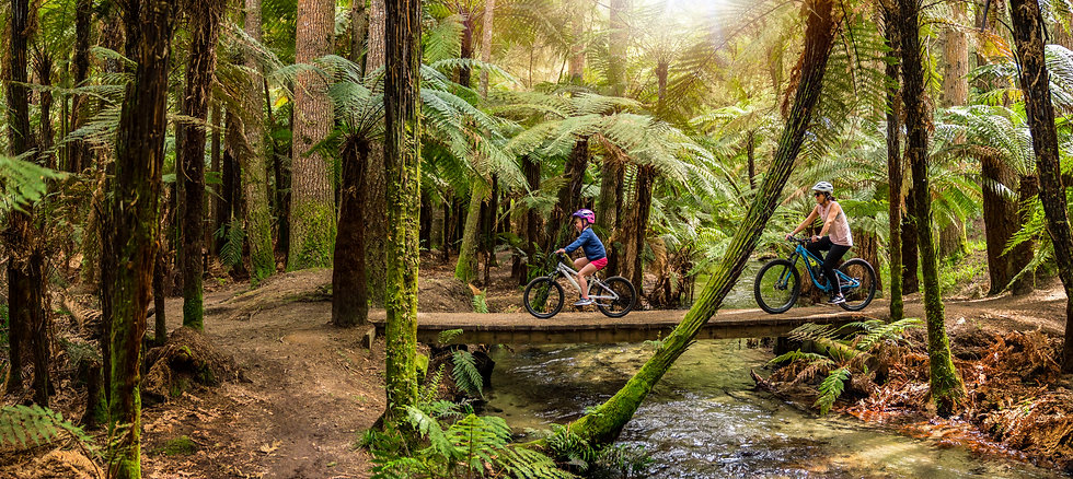 Mountain_Bike_v2_Final_HR.jpg