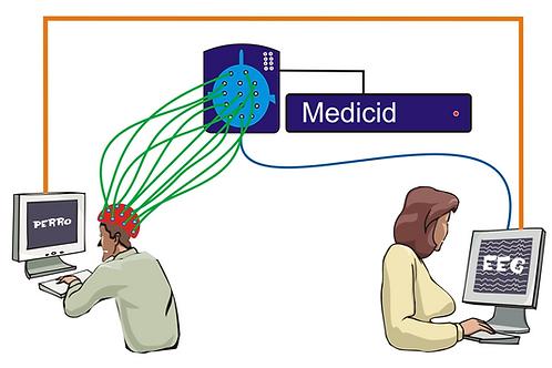 Sistema para estudios de Psicofisiología mediante Potenciales Endógenos