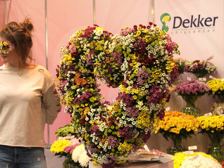 Meet Flower Expo in Moscow