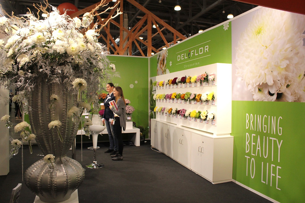 Deliflor Chrysanthen stand