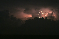 2011-03-06---Florida---Storm