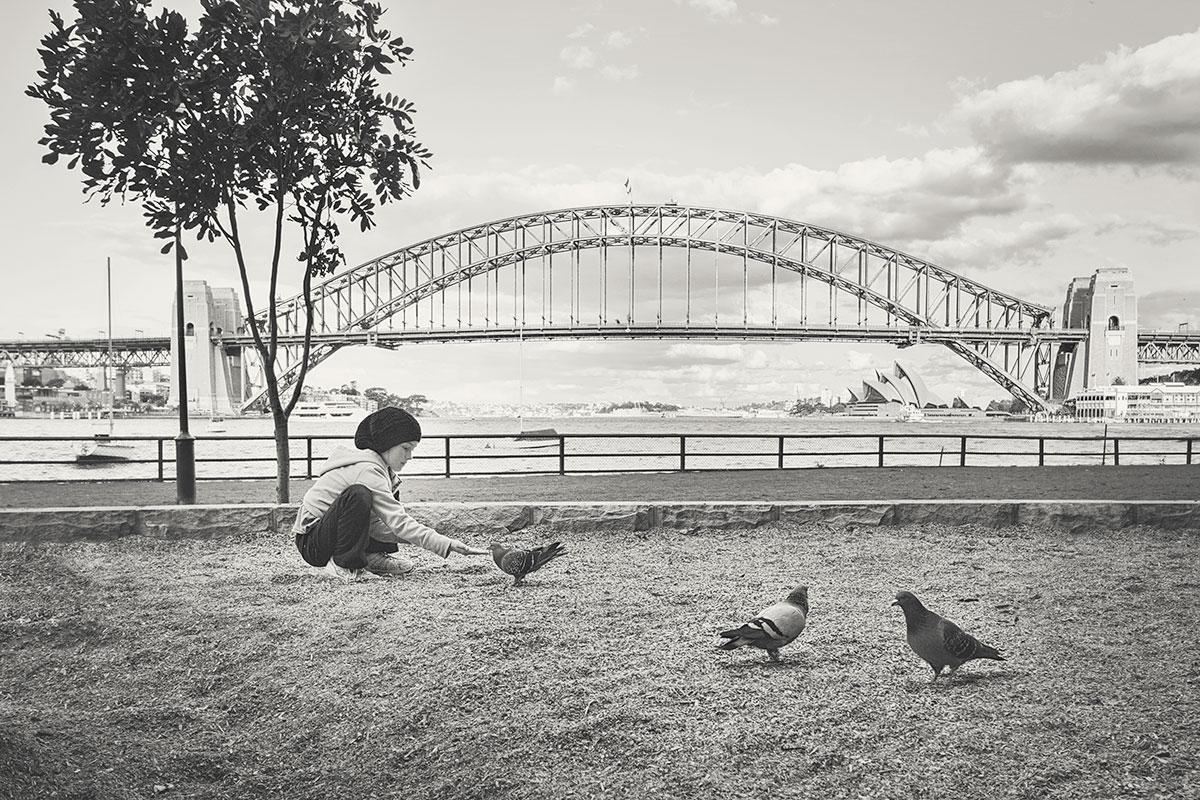 2013----feeding-pigeon-B&W