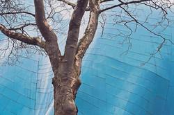 2014----EMP-architecture-29
