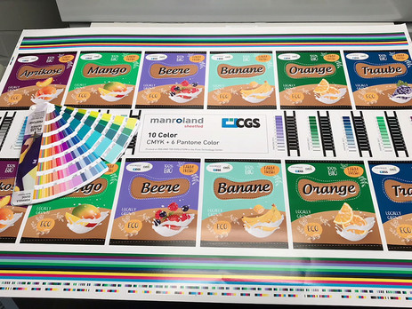 How to Print Spot Colours – Without Expensive Spot Inks