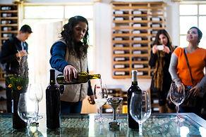 Recorrido de la vinícola, palenque de mezcal y cervecería con degustación