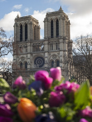 Ma Notre Dame