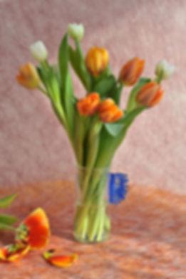65 Tulpen bearbeitet 2010.jpg