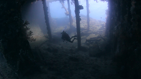 CRYSTAL BAY DIVING