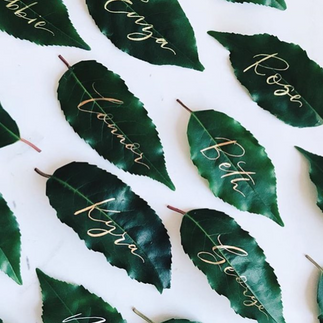 Fresh leaf place names