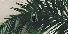 Coconut Premade Logo