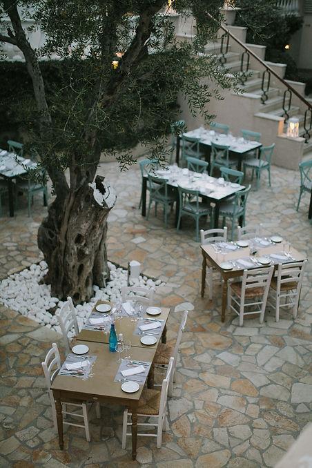 ivy-inks-paper-co-olive-grove-restaurant-logo-design-foliage-garden-photography.jpg