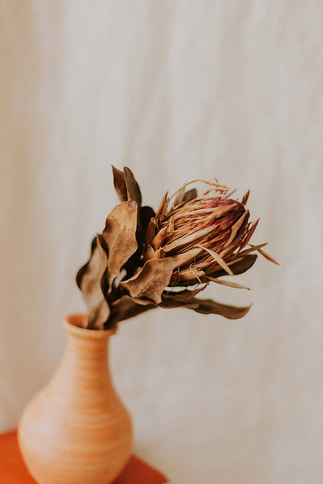 ivy-inks-paper-co-laura-simmons-hairdressing-branding-design-photography-dried-florals.jpg
