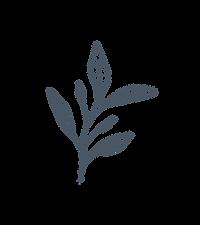 emmanortonflowers_foliage_neptune.png