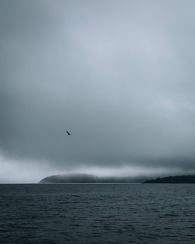 ivy-inks-paper-co-emma-norton-flowers-branding-stormy-blue-sea-photography.jpg