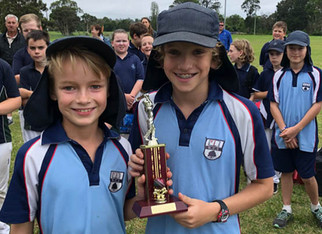 Primary Super 8's Cricket