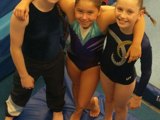 Great result at CSSA State Gymnastics