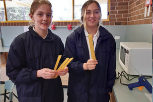 Year 7 bridge building