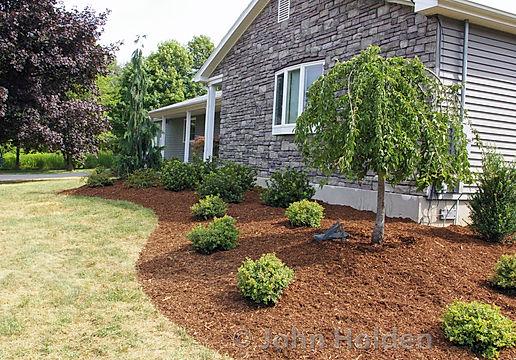 Garden Mulching.jpg