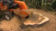 Stump Grinding.jpg