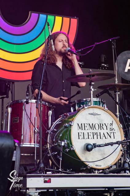 Memory_of_a_Elephant-7.jpg