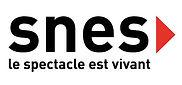 ancien_logo_SNES.jpg