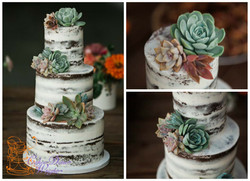 succulent naked cake