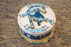 UCD graduation cake