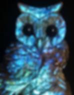 Athena Owl 777 Majestic 2020.jpg