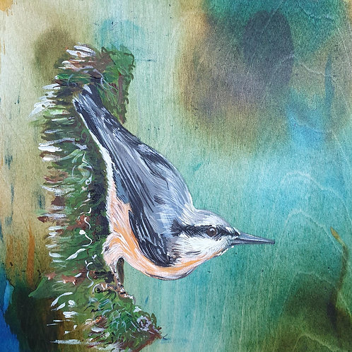 The Nuthatch Song
