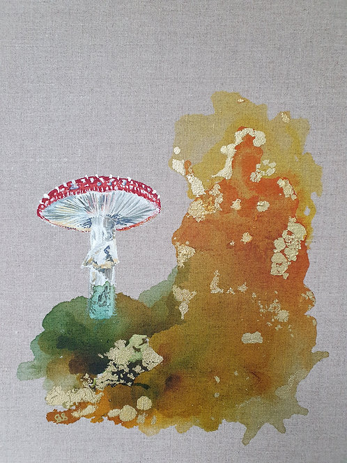Fly Agaric hunting