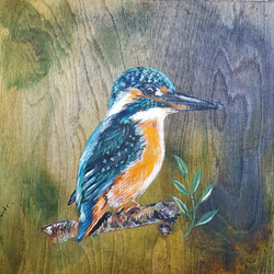 The Kingfisher Song