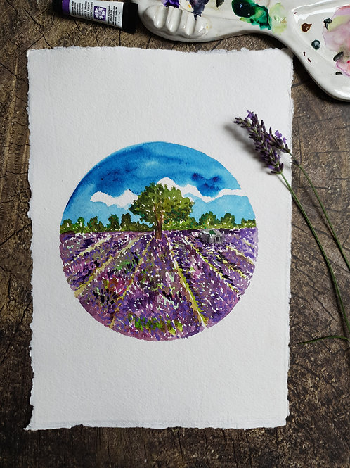 The Lavender Field- Original A4 watercolour