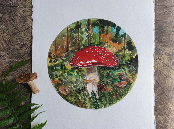 On the Forest Floor