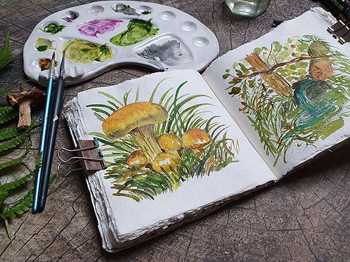 Autumn Sketchbooks @ National Trust Runnymede & Ankerwycke