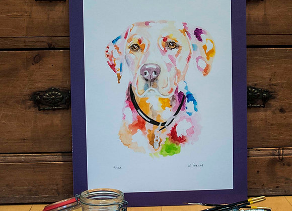 A3 Giclée Print - Golden Labrador
