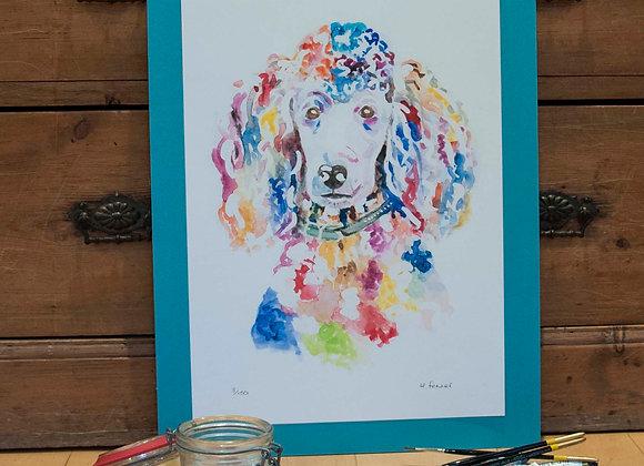 A3 Giclée Print - Poodle